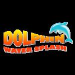 Dolphin Water Splash